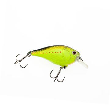 Immagine di Castaic Boyd Duckett BD 1.5 Square bill Crankbait