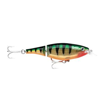 Immagine di Rapala X-Rap Jointed Shad