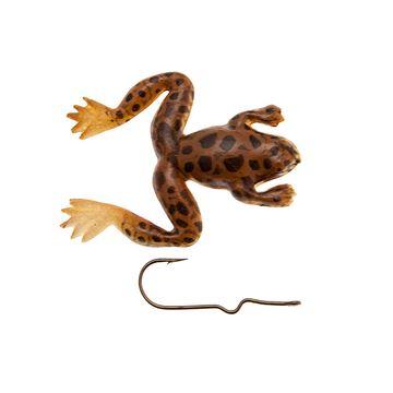 Immagine di Burke Small Frog Bullfrog