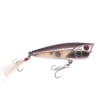 Immagine di Bass Pro Shops XTS Popper