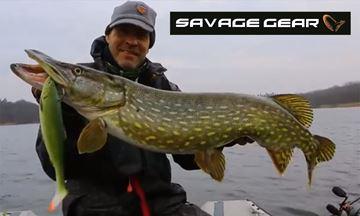 Immagine di Savage Gear 3D LB Herring Shad Ready To Fish
