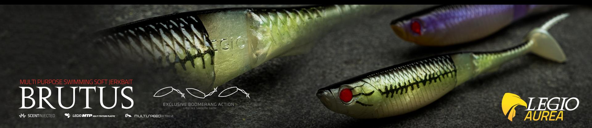 bass fishing, legio aurea, spinning, bass